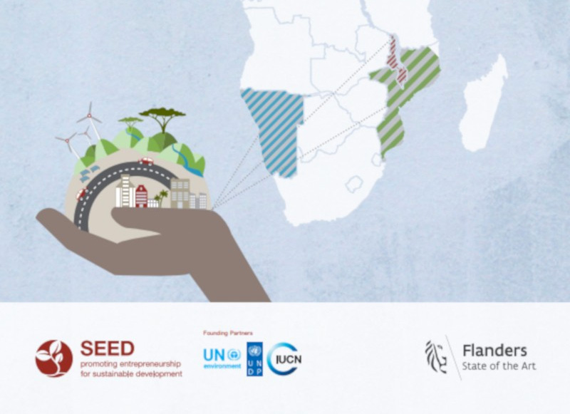 The Landscape of Eco-inclusive Entrepreneurship in Malawi, Mozambique and Namibia